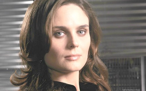 Temperance Brennan wallpaper with a portrait called Temperance Brennan Wallpaper