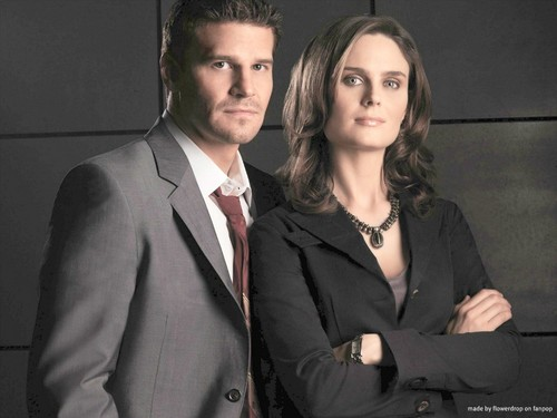 Temperance Brennan wallpaper with a business suit, a suit, and a double breasted suit titled Temperance Brennan Wallpaper