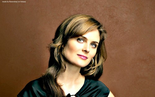Temperance Brennan پیپر وال containing a portrait called Temperance Brennan پیپر وال