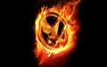 The Hunger Games Wallpaper - the-hunger-games wallpaper