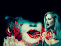 true-blood - TrueBlood! wallpaper