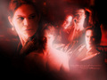 TrueBlood! - true-blood wallpaper