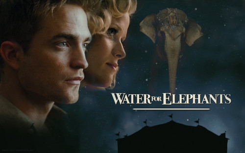 Water for Elephants wallpaper