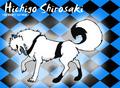 Wolf Hichigo