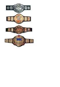 ecw belts
