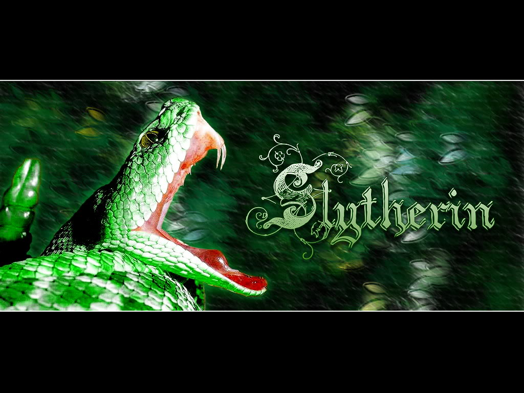 slytherin images slytherin pride wallpaper photos 30629812