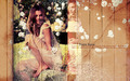 stana-katic - stana katic.  wallpaper