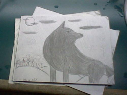 늑대 drawings