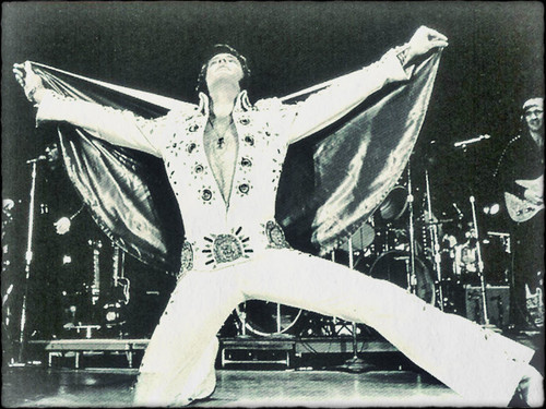 ☆ Elvis ☆