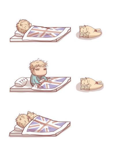 ~France x England~