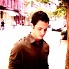 → dan humphrey; - tv-male-characters Icon