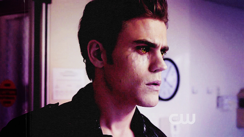 TV Male Characters wallpaper possibly containing a portrait called → stefan salvatore;