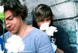 1D & Liam<3