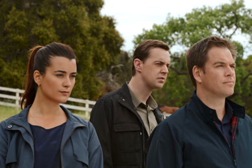 NCIS images 9x24 Til Death Do Us Part HD wallpaper and background photos