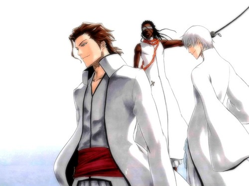 Aizen-sama - aizen Wallpaper