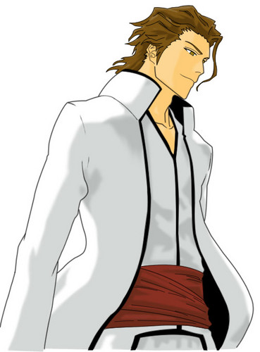 Aizen-sama - aizen Photo