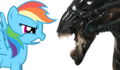 Alien Vs. Pony - rainbow-dash photo