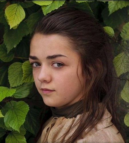 Women of Westeros wallpaper with a garden nasturtium, a nasturtium, and a camellia entitled Arya Stark