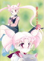 Black Lady and Chibiusa - sailor-moon photo