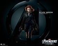 the-avengers - Black Widow wallpaper