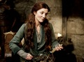 Catelyn Stark - women-of-westeros photo