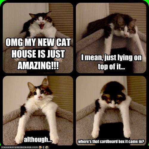 Comic Pictures of Cats Comical-ish Famous-cats
