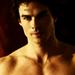Damon and Stefan Salvatore