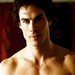 Damon and Stefan Salvatore - damon-and-stefan-salvatore icon