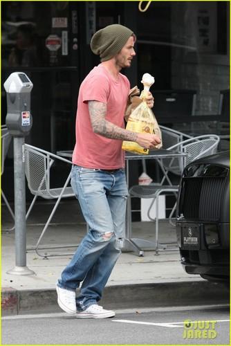 David Beckham: Harper Gets a Modeling Offer