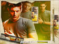 Dean Winchester - dean-winchester wallpaper
