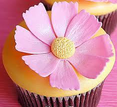 cupcakes fondo de pantalla containing a magdalena and a bouquet titled flor cupcakes
