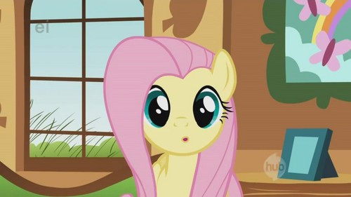 Fluttershy's oh? face