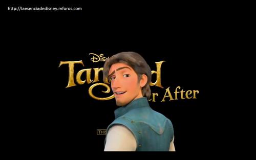 Flynn Rider Tangled Ever After add