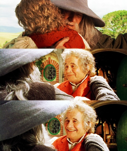 Gandalf and Bilbo - lord-of-the-rings Photo