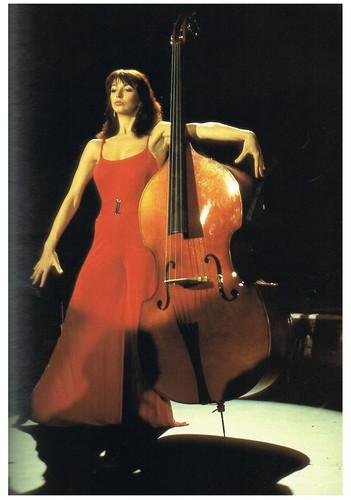 Kate kichaka