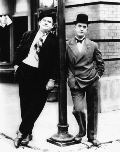 pohon salam, laurel and Hardy