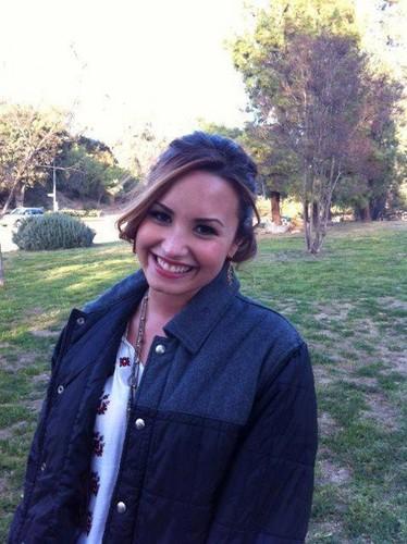 Lovato Twitter