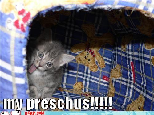 My prechus