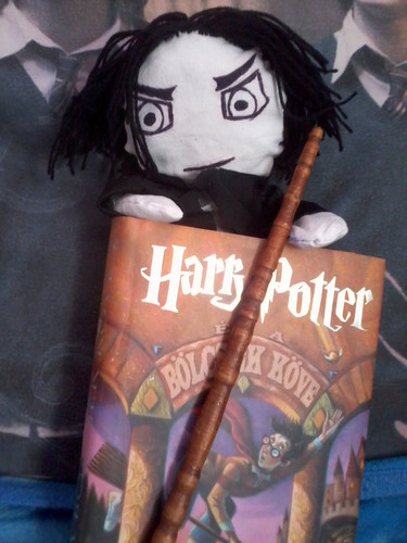 My wand and my plush Severus with one book - snapes-family-and-friends Fan Art