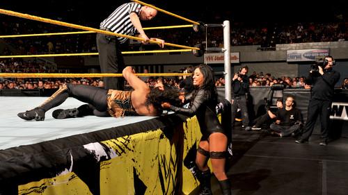 NXT Digitals 5/9/12
