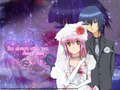 shugo-chara - Neko of Misfortune wallpaper