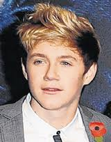 Niall - directioners Photo