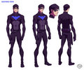 Nightwing - young-justice photo