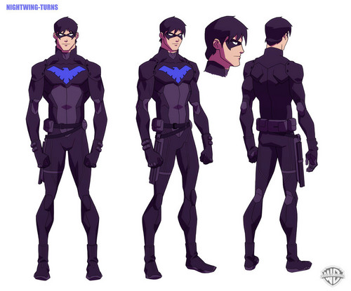 Young Justice Hintergrund probably containing a green beret, kampfanzug, schlachtkleid, schlacht-kleid, fatigues, ermüden, and ermüdet called Nightwing