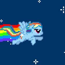 Nyan kuda, kuda kecil