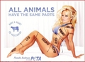 Pamela Anderson...WTF... - feminism photo