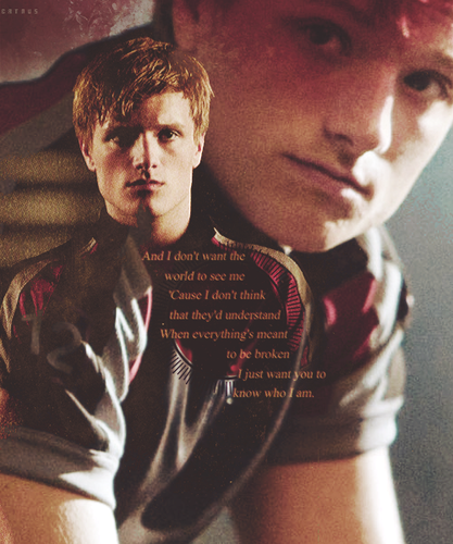 Peeta Mellark 바탕화면 with a fedora called Peeta