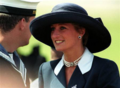 Princess Diana (I really like this hat)