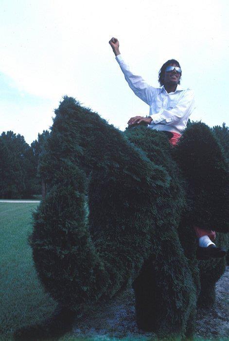 Really RARE MJ photo ;)