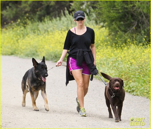 Reese Witherspoon Walks the Dogs Before Leaving L.A. - reese-witherspoon Photo